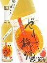 【 梅酒 】ゼリー梅酒 500ml 福岡県 池亀酒造【 774 】【 贈り物 ギフト プレゼント ホワイトデー 】