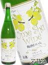【梅酒】梅酒ワイン 白 1.8L/麻原酒造/白ワイン梅酒【1...