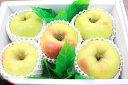 名月りんご5個入り送料無料