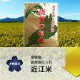 【27年産】【農家のお米】滋賀県産 キヌヒカリ 玄米5kg【精米無料】02P23Apr16