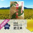 【27年産】【農家のお米】滋賀県産 キヌヒカリ 玄米10kg(5kg×2袋)【精米無料・送料無料】02P23Apr16