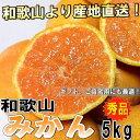 【予約販売中】和歌山県産 みかん ミカン 秀品 5kg 【送...
