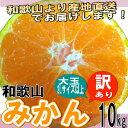 和歌山県産 訳ありみかん 大玉(2Lサイズ以上) 10kg【...