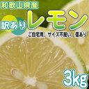 レモン 国産 和歌山県産 訳あり レモン3kg 送料無料 防腐剤不使用