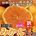 【お試し】和歌山県産 訳あり みかん ミカン 2.5kg (...