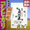 【米 特a 常連】29年産 新潟県魚沼産コシヒカリ5kg\誰...