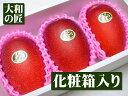 とっておきのギフトにも最適★宮崎県産 完熟アップルマンゴー ...