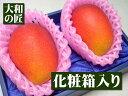 宮崎県産 特選完熟アップルマンゴー[大玉2個入り化粧箱]【smtb-k】【w4】