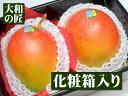 【11月上旬以降予定★】ブラジル産 アップルマンゴー[大玉2個入り化粧箱]【10P07Nov15】
