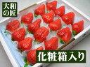徳島県の極少数の農家でのみ栽培されているプレミアムイチゴ