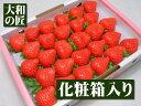 一番美味しい時期の『ももいちご』を衝撃価格で★徳島県産ももいちご[28粒入り化粧箱]