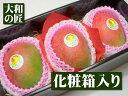【1月末以降予定★】ペルー産 アップルマンゴー[大玉3個入り化粧箱]【売れ筋】【10P07Feb16】