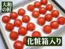 2月下旬以降予定フルーツトマト発祥の地高
