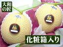 静岡県が誇る全てにおいて最高品質のメロン