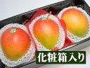 ブラジル産 アップルマンゴー
