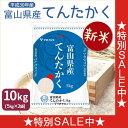 数量限定 新米 H30年産てんたかく 10kg 5kg×2 富山県産米 白米 工場直送