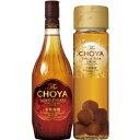 【送料無料】【カタログ掲載品】【代引不可】The CHOYA 至極の梅酒セット 15度