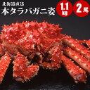 【母の日ギフト】 北海道直送 本タラバガニ姿 1.1kg×2...