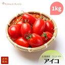 北海道産ミニトマト 「アイコ」 1kg