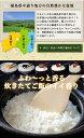 令和2年産福島県産ミルキークィーン20kg( 5kg×4袋) 【あす楽対応】