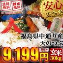 【送料無料】平成27年産 福島県中通り産 天のつぶ 玄米:30kg(白米:約27kg)