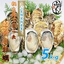 殻付き 牡蠣 5kg 【冷蔵便】10800円以上は送料無料 漁師が販売、とれたて新鮮な 殻付き カキ です。 生食用 兵庫県 相生