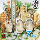 殻付き 牡蠣 7kg 【冷蔵便】10800円以上は送料無料 漁師が販売、とれたて新鮮な 殻付き カキ です。 生食用 兵庫県 相生