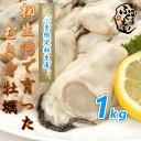 剥き身 牡蠣 1kg【冷蔵便】10800円以上は送料無料 漁師が販売、とれたて新鮮な むき身 カキ です。 生食用 兵庫県 相生