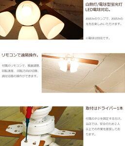 plusmore�֥�����ե���Windouble(4-lights)�ץۥ磻�ȡ��֥�å�4��LED�б���⥳���ե�������֥�BIG-101������饤��ŷ���������ƥꥢ����������������̵����