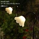 ソーラー パスフラワーライト フラワー センサー ガーデン
