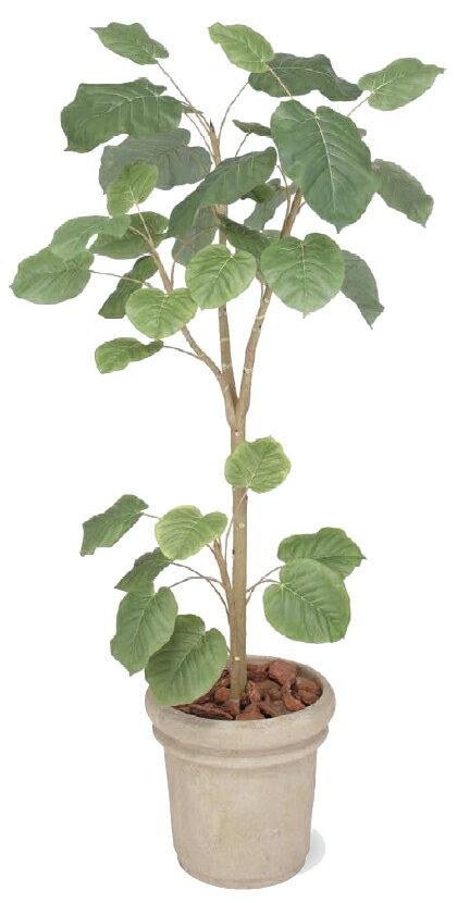タカショー グリーンデコ鉢付 観葉植物「ウンベラータ」1.8m[02P18Jun16]