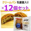 テイスティロング乳酸菌入りクリームパン12個セット