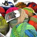 Crazy Zauberball - クレイジーザゥバーボール【SCHOPPEL|ショッペル】ベルンド・ケストラーさんの著書で使用されている靴下専用毛糸…
