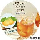 パウティー アールグレイ 紅茶 無糖 1袋 80g インスタント 粉末
