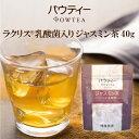 ラクリス 乳酸菌入り ジャスミン茶 1袋 40g ジャスミンティー