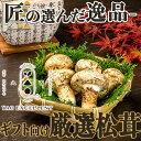 天然松茸 400g 北米産(アメリカ・カナダ) ギフト可 プレゼント お歳暮 香りマツタケ シャキシャキ食感まつたけ 焼き松茸 土瓶蒸し すき焼き 吸い物