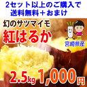 ★収穫開始!●紅はるか 2.5kg → 1000円【税別】 2セット(5kg)以上ご購入で【送料無料