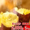 紅はるか 宮崎県都城産(令和元年産)5kg入 2,000円【...