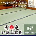 い草 ラグ 国産 い草上敷き 8畳 348×352cm 【 ...