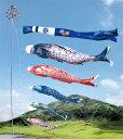 40%OFF【こいのぼり】黄金の輝き 太陽鯉 3M8点セット(庭園用こいのぼり)