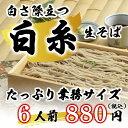 白糸生そば6人前1kg『信州蕎麦 業務用 信州直送』4,000円以上で送料無料
