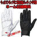 手袋刺繍サービス、送料無料(メール便配送)!! ウィルソン ディマリニ 両手組学生対応ダブルベルト バッティング手袋(WTABG030x)