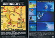 """SURFING LIFE サーフィングライフ""/サーフ サーフィン サーファー SURFIN SURF SURFER 便利/サーフィン DVD"