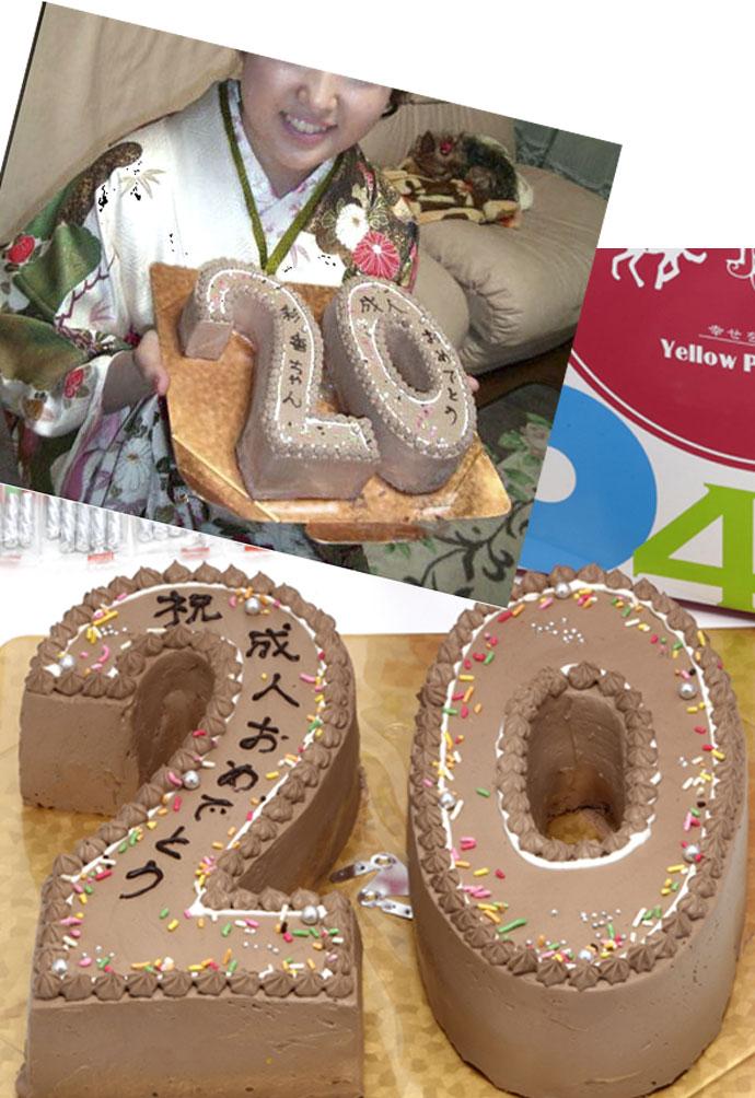 誕生日お祝い記念キャラクタースイーツそっくりスイーツ洋菓子/シフォンケーキ/プレーン数字をカタチに大