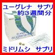 ユーグレナ エコ(42粒入/2粒×21包)ミドリムシ(ユーグレナ)サプリメント ユーグレナ サプリ ミドリムシ サプリメント 10P27May16