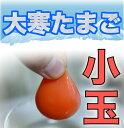 【大寒たまご】濃厚卵黄もみじたまご【小玉20個入り】