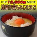 濃厚卵黄 もみじたまご 【160個入り】