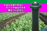 もぐらをやっつけろ!LED付 電池式 音波モグラ撃退届いてすぐ使えるように三菱アルカリ乾電池付き!