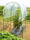 【smtb-TK】【送料無料】DAIM 家庭菜園 雨よけセット トマトやナスのひび割れ防止、雨や風からしっかりガードします!