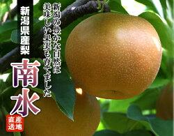 【送料無料】ながさき果樹園の新鮮な梨(あきづき)3kg(6〜70玉)〜ジューシーな果汁が口いっぱいに!〜※生鮮果実のため商品代引きはご利用頂けません